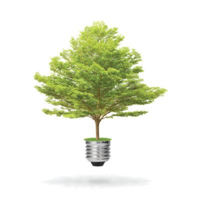 Aplus tree
